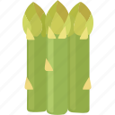 asparagus, garden, shoots, sparrow grass, vegetable icon
