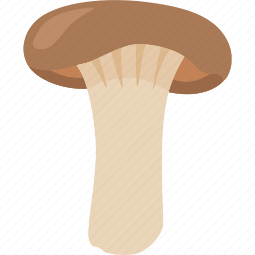 boletus, brown, french horn, king, mushroom, oyster, trumpet icon
