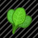 food, healthy, spinach, vegetable, vegeterian