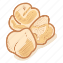 chick, chickpeas, leguminous, pea, peas, vegetable icon