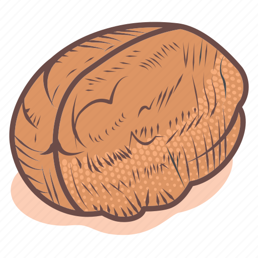Fruit, healthy, nut, seed, vegan, walnut icon - Download on Iconfinder