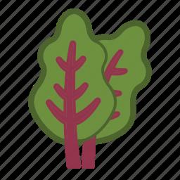 chard, salad, vegetable icon