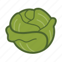 leaf, lettuce, salad, vegetable icon