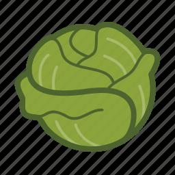 leaf, lettuce, salad, vegetable icon