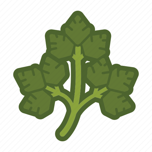 garnish, leaf, parsley, salad, vegetable icon