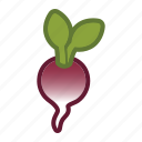 radish, salad, vegetable icon