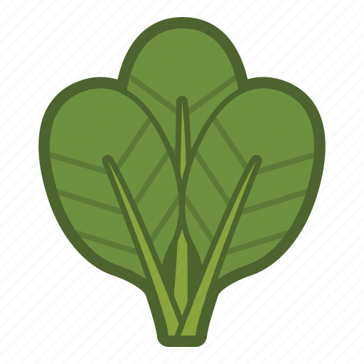 leaf, leaves, salad, spinach, vegetable icon