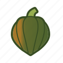 acorn, gourd, squash, vegetable icon