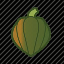acorn, gourd, squash, vegetable icon