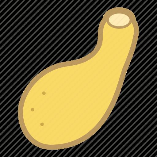 gourd, squash, vegetable, yellow icon