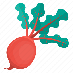 beetroot, cooking, food, kitchen, meal, plant, vegetable icon