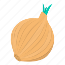 cooking, food, kitchen, meal, onion, plant, vegetable icon