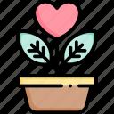 plant, pot, nature, leaf, flower