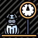 animals, care, dog, pet, scale icon