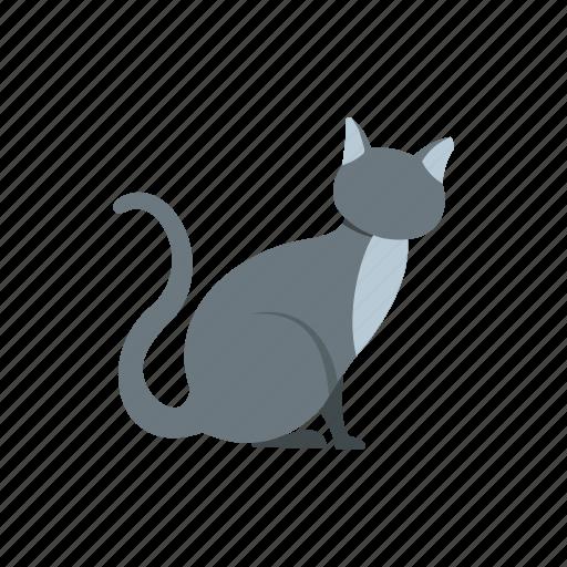 animal, cat, cute, domestic, feline, mammal, pet icon