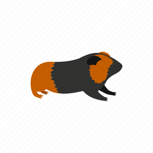 animal, cavy, cute, funny, pet, pig, rodent icon