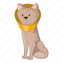 cat, cone, funnel, vet icon