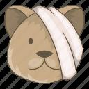 animal, bandage, cat, eye, head, sick, veterinary