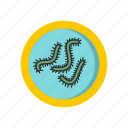 bacteria, biology, infection, lot, medicine, microbe, microbiology icon