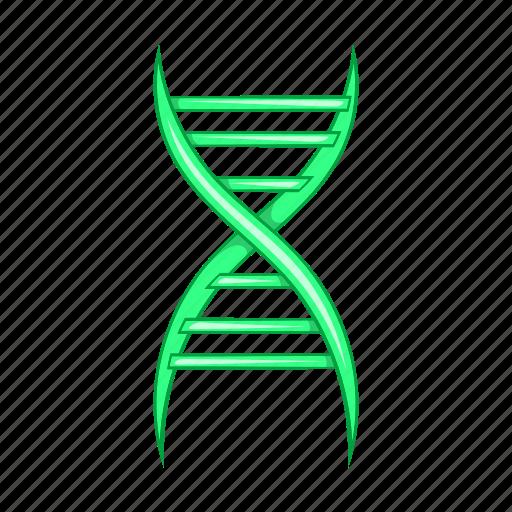 biology, biotechnology, cartoon, chain, dna, molecule, science icon