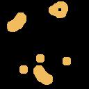 animal, bacteria, pig, virus icon