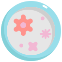 bacteria, dish, petri, transmission, virus icon