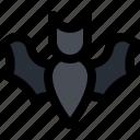 animal, bat, carrier, covid-19, mammal, transmission