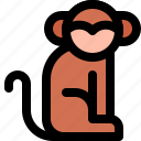 animal, carrier, mammal, monkey, transmission icon