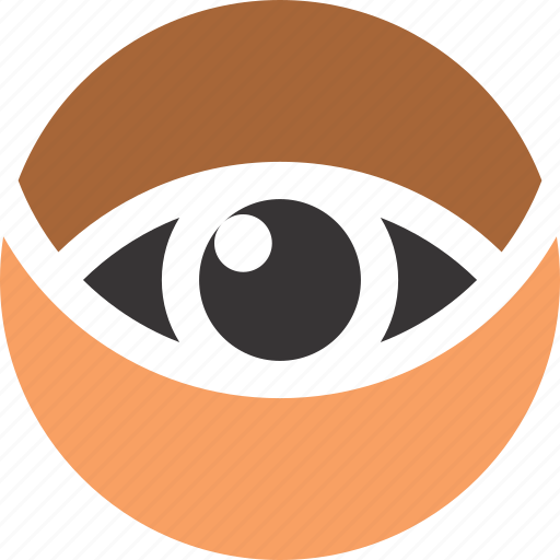 eye, find, human, optical, view icon