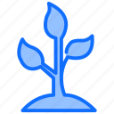 nature, plant, growth, flower, grow