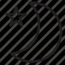 moon, star icon