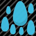 drop, humidity, rain, season, water