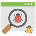 bug detection, bug searching, software testing, virus scanning, website security icon