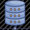 connection, development, network, server, sharing, storage, web