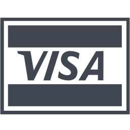 business, buy, cash, credit, currency, ecommerce, finance, financial, money, payment, price, shopping, visa, visa card icon