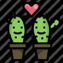 cactus, couple, grow, love, plant