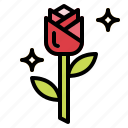 blossom, botanical, flower, petals, rose icon