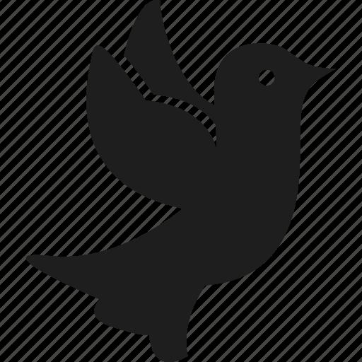 bird, dove, fly, peace icon