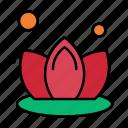 lily, lotus, spa
