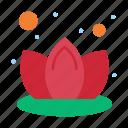 lily, lotus, spa icon