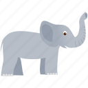 big, elephant, gray, wild, zoo icon