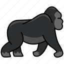 animal, gorilla, wild, wild animal, zoo icon