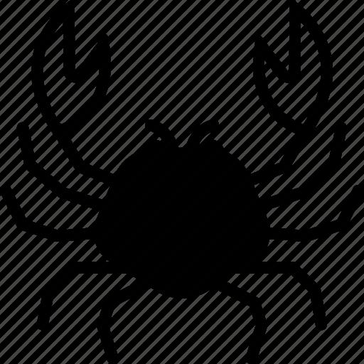 Animals, crab, food, sea icon - Download on Iconfinder