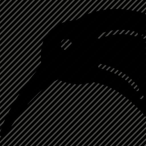 Bird, kiwi, okarito icon - Download on Iconfinder