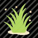 ecology, flower, garden, grass, green, nature, plant