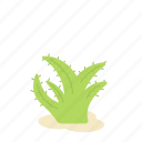 aloe vera, floral, flower, forest, garden, nature, plant icon