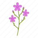 flowers, garden, gardening, leaf, plant, wildflowers icon