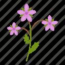 stork, wildflowers, flower icon