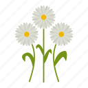 daisy, flowers, garden, gardening, leaf, plant, wildflowers icon