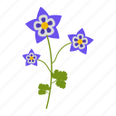 aquilegia, flowers, garden, plants, wildflowers icon